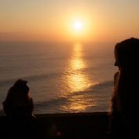 Sonnenuntergang mit Affe