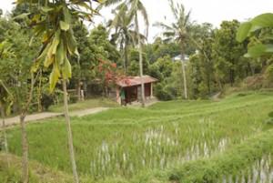 Eines balinesischen Haus